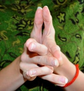Surabhi Mudra (cow) Believed to invite empathy, awareness and hidden gifts for use in benefiting all beings.