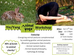 Yin & Yang AY Workshop