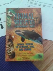Animal Cards Box