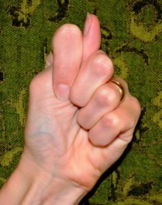 Kapittha Mudra (elephant apple) Believed to bring unity between our animal and spiritual sides.